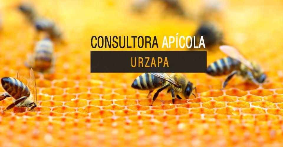 Consultora Apícola Urzapa