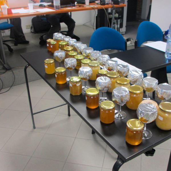 curso cata de miel